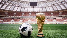 世足賽比賽用球「Telstar 18」。(圖/adidas提供)