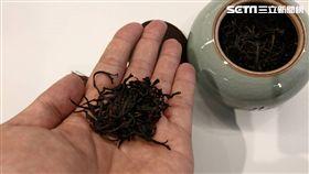 孫于翔,茶行,台灣紅茶,自然農法,茶園,孫紅茶行,聚寶盆