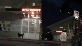 彰化警田中分局源泉派出所跑馬燈出現不雅字眼/黑色豪門企業臉書