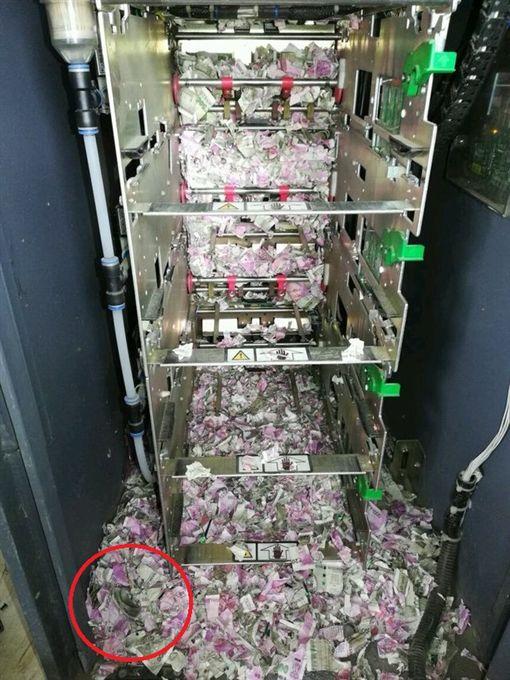 印度國營銀行ATM故障12天 鈔票被老鼠咬碎(圖/翻攝自推特)