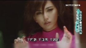 歌手大遺珠