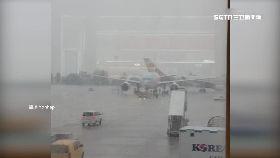 韓飛機相撞1100