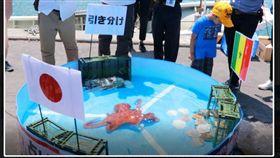 日本章魚哥拉比歐。(圖/翻攝自每日新聞)