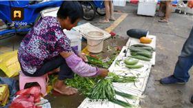 村子賣地人分3百萬!她堅持繼續賣菜 圖/翻攝自梨視頻