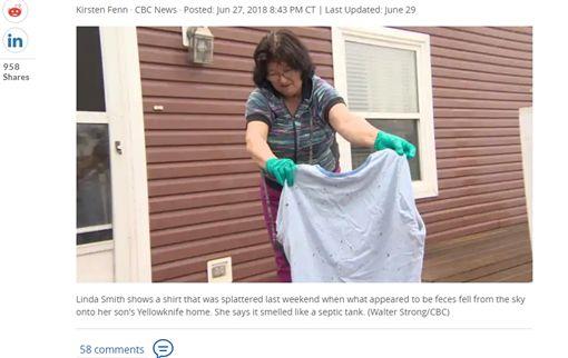加拿大,2個月,排泄物,糞便雨,弄髒,汽車,加拿大雁(圖/翻攝自《CBC》)