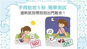 名家/毛起來/手背貼地5秒——過熱就別帶狗狗出門散步!