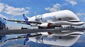 大白鯨,飛機,空中巴士(圖/翻攝自Airbus推特)