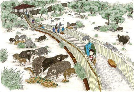 山豬多到滿出來!日動物園沒人要去 可愛動物恐全部安樂死圖/翻攝自東筑波烏托邦動物園官網http://h-yuutopia.com/