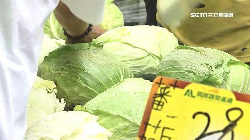 -買菜-青菜-菜價-