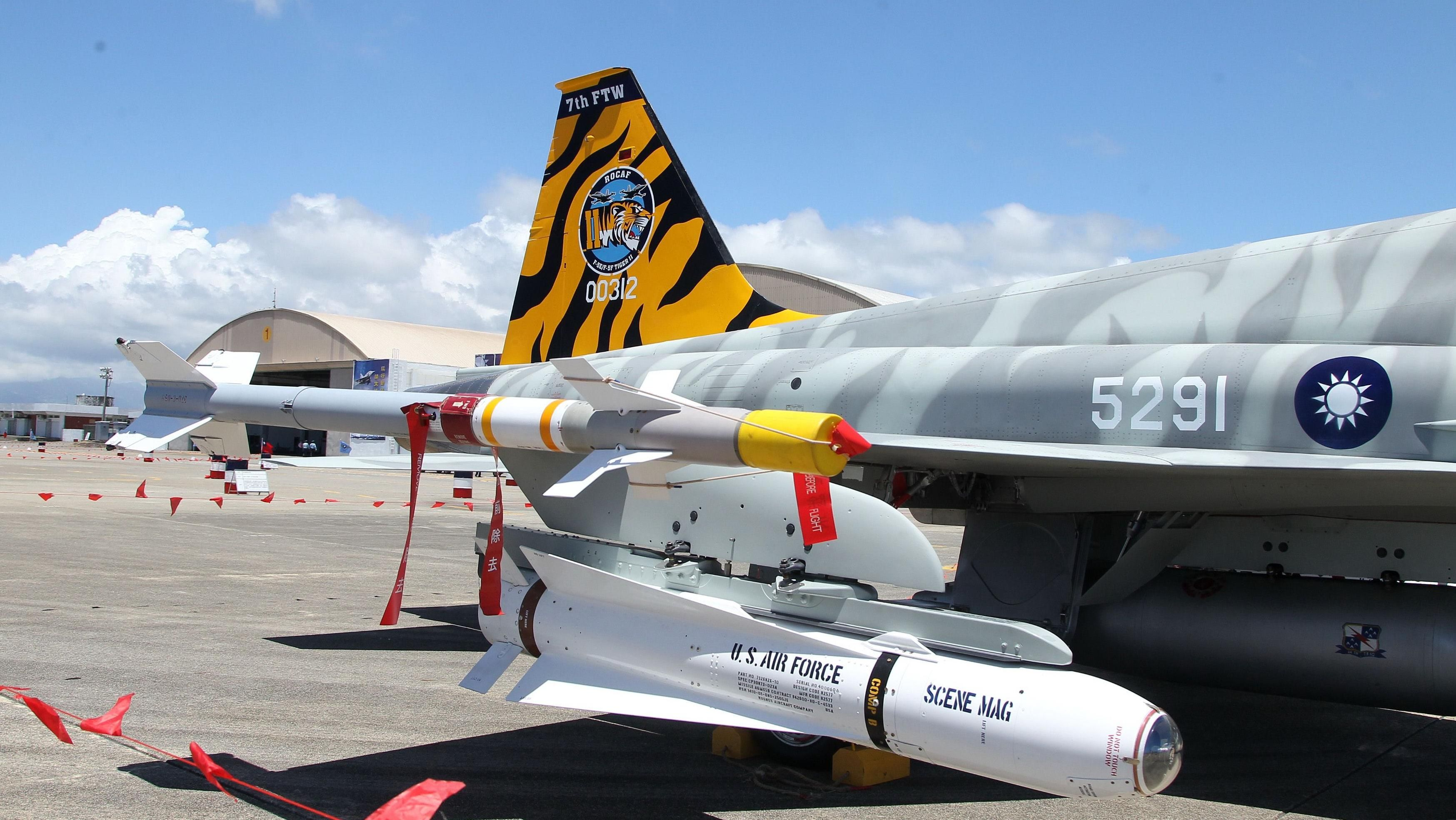 F-5虎斑彩繪機 記者邱榮吉攝