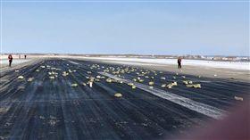 俄羅斯,飛機,金條,珠寶,意外 圖/翻攝自Siberian Times