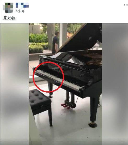 鋼琴自己演奏/臉書爆廢公社