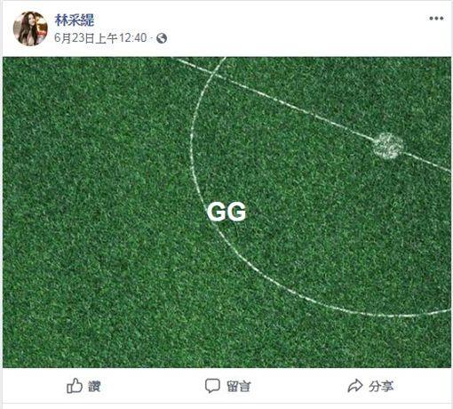 林采緹/翻攝自林采緹臉書