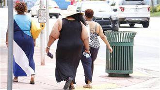 飲食西化缺運動 脂肪肝恐釀慢性肝病