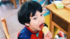 春一枝,草莓,香瓜,芒果,誠品,枝仔冰,誠品書本造型書籤