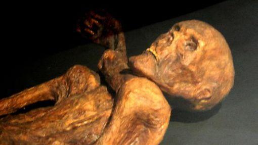 木乃伊,冰人奧茨,Ötzi(圖/翻攝維基百科)