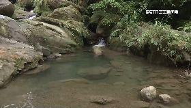 仙女瀑靈異1800