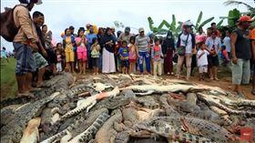 印尼鱷魚咬死農民遭村民殘忍屠殺(圖/翻攝自YouTube)