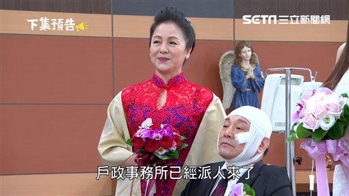 金家好媳婦,林義芳,潘麗麗