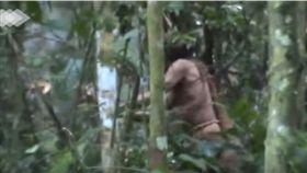 亞馬遜森林原住民曝光。(圖/翻攝自Funai YouTube)