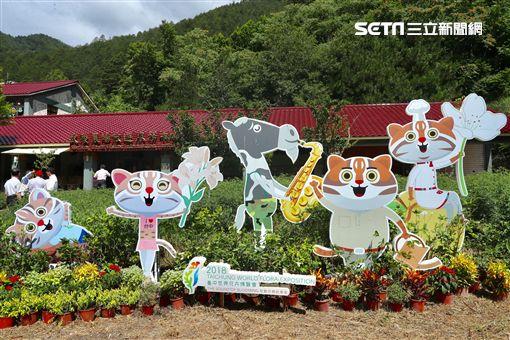 台中花博,武陵農場
