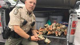 皇后,海螺,基韋斯特,德州,沙灘,海,Key West,保護,生物 圖/翻攝自推特 https://goo.gl/7gq3L5