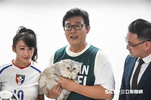 姚文智與黨籍市議員合拍定妝照曬愛貓Togi。 (圖/記者林敬旻攝)