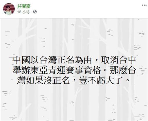 民間發起運動就被打壓 華視總經理:沒正名就虧大了!圖/翻攝自莊豐嘉臉書