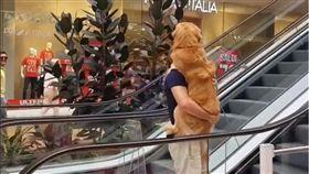 阿金見手扶梯嚇到「攤」 暖爸「救援」抱起2歲兒