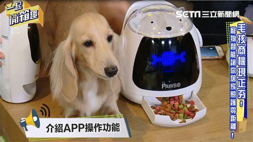 主持人雲爸與來賓電獺少女宇恩及寵物訓練師Ethan開箱寵物智能商品。 介紹寵物智能商品 - 寵物樂園組。 介紹寵物智能商品 - 寵物智慧扣。