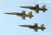 F-5戰機彩繪機,以虎斑為主要設計元素,象徵著台東志航基地所孕育出的小老虎,堅守崗位,捍衛領空。(記者邱榮吉/台東拍攝)