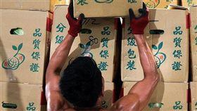 攝影師張良一拍攝搬運果菜的勞工 圖/翻攝自吳音寧臉書