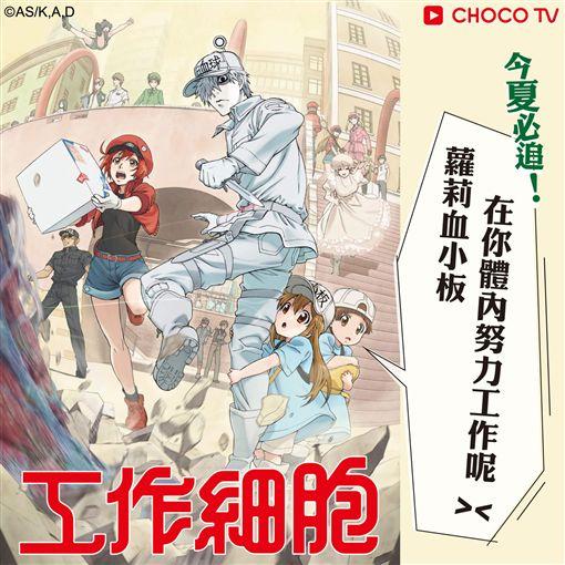 圖片提供:CHOCO TV