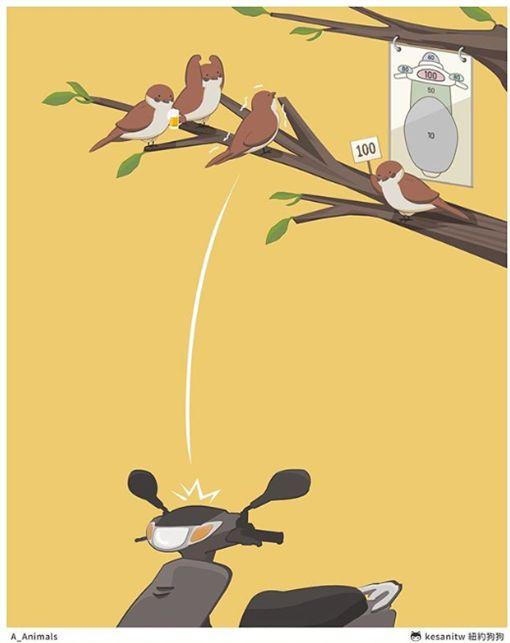 麻雀比「屎砸機車」 動物插畫幽大陸抓姦默離婚萌