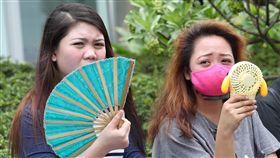 高溫炎熱 民眾搧扇子吹小電扇消暑中央氣象局預報,3日北部、東北部高溫攝氏30、31度左右,花東高溫約30度,中南部仍是悶熱,高溫在32至35度間。上午台北街頭的民眾搧扇子、吹小電扇抗熱消暑。中央社記者吳翊寧攝 107年6月3日