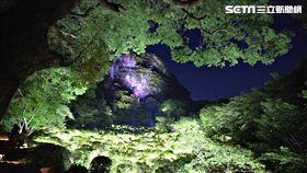 御船山樂園, teamLab光雕秀,日本佐賀。(圖/記者簡佑庭攝)