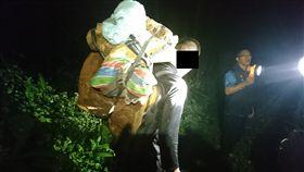 花蓮,保七,紅檜,樹瘤,林管處,森林管護員,販毒集團。翻攝畫面