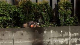 台北,大直,實踐大學,墜樓,男子。翻攝畫面
