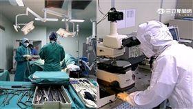 醫學系,電機系,發展,出國,PTT