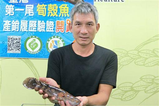 退休師養筍殼魚 挑戰產銷履歷驗證第一人