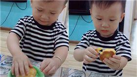 小豬餅乾,小男孩,慘叫,道歉,耳朵(圖/翻攝自抖音)