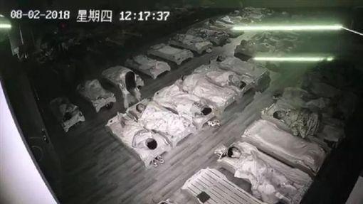 中國大陸幼兒園,虐童,過期食品(圖/翻攝自微博)