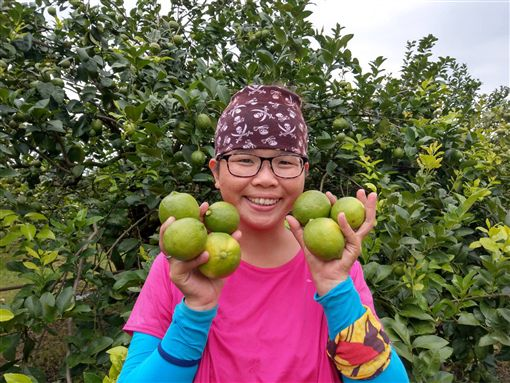 婚變返鄉種安全檸檬 單親媽黃靖惠樂當青農