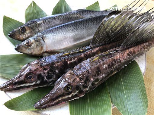 小樽夢幻之魚