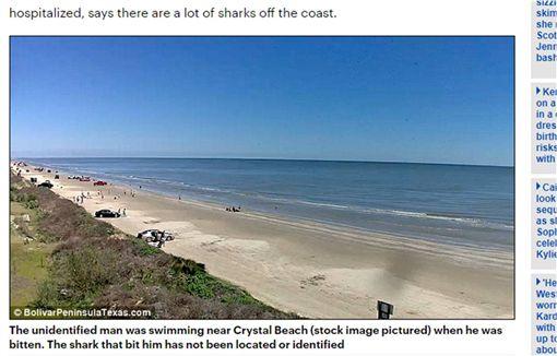 美麗海灘暗藏「鯊」機 被咬衰男:牠想吃掉我! 圖/翻攝自鏡報