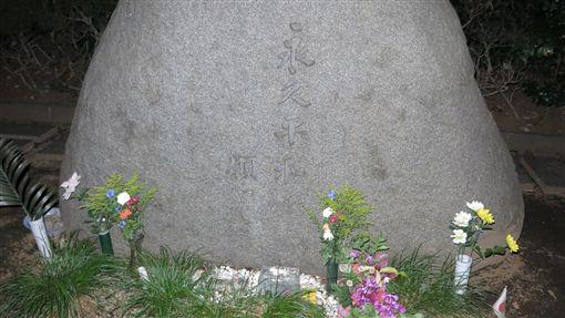 圖/口袋日本提供