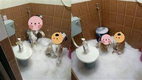 2兒洗澡超安靜!媽媽轉身一看崩潰 網笑翻:開泡泡趴不糾