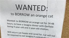 媽媽真偉大!貼傳單徵真貓版「加菲貓」一起共進晚餐(圖/翻攝自@lauren_jade44推特)