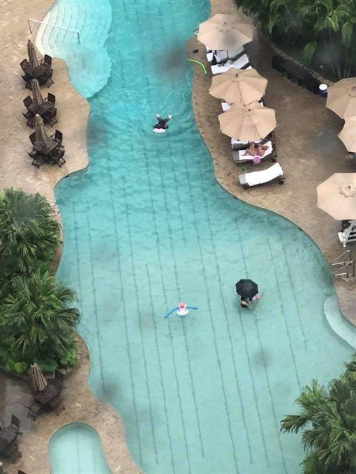 游泳,戶外游泳池,撐傘,九把刀 圖/翻攝自九把刀臉書