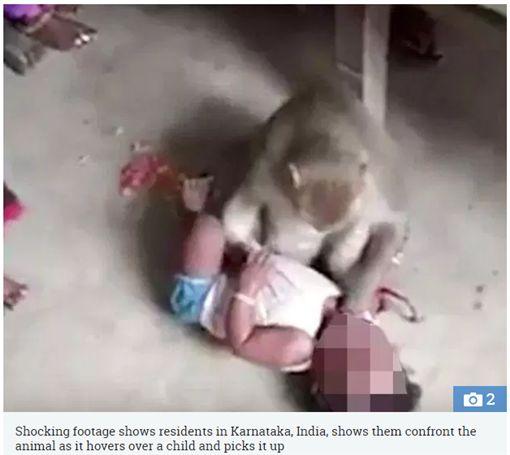 潑猴闖民宅擄嬰。(圖/翻攝The Sun)